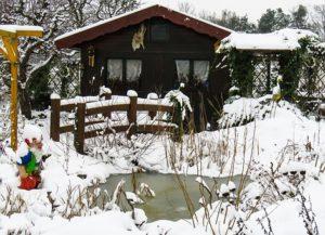 gardening in the winter indoors : frozen garden