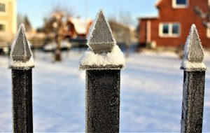 frozen garden - too cold to garden