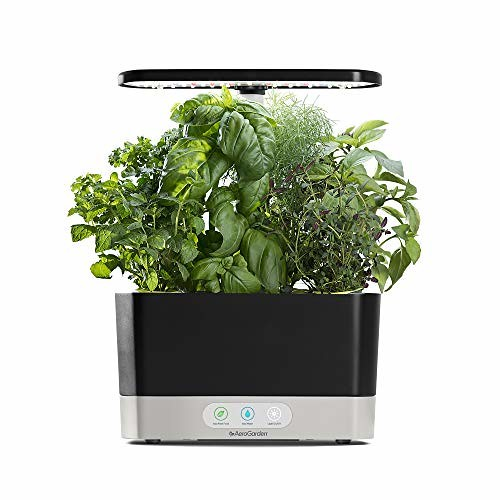 aerogarden with herbs
