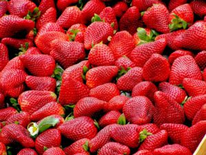 loads of strawberries